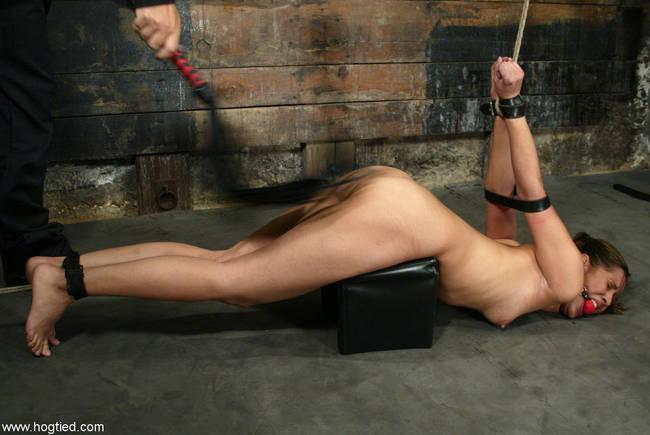 sex sigmaringen bondage discipline