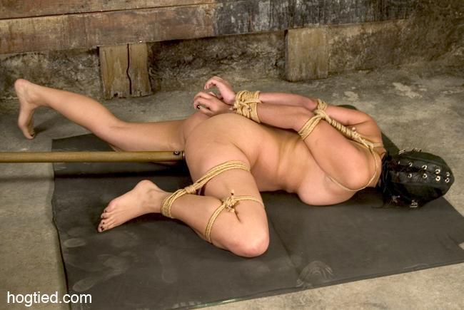 Bondage and torture dvds